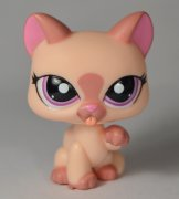 +++ LITTLEST PET SHOP - LPS - KOČIČKA 1626 +++