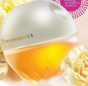 INCANDESSENCE 50ML