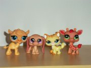 LPS littlest pet shop sada