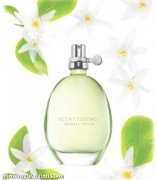 Scent Essence Sparkly citrus EDT 30ml