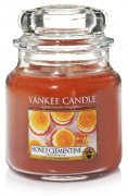 Honey clementine střední classic Yankee candle