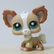 LITTLEST PET SHOP čivava