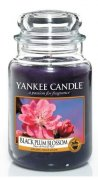 Black plum blossom velký classic Yankee candle