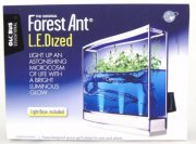Forest Ant LEDized Antquarium