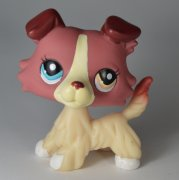 +++ LITTLEST PET SHOP - LPS - PES KOLIE 1262 +++
