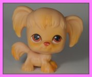 +++ LITTLEST PET SHOP - LPS - PES KOKRŠPANĚL +++