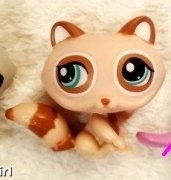 LPS - Littlest Pet Shop - mýval