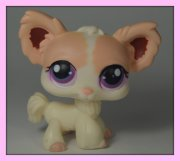 +++ LITTLEST PET SHOP - LPS - PES ČIVAVA +++