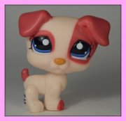 +++ LITTLEST PET SHOP - LPS - PES JACK RUSSEL +++