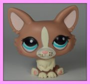+++ LITTLEST PET SHOP - LPS - PES CORGI +++