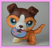 +++ LITTLEST PET SHOP - LPS - PES KOLIE +++
