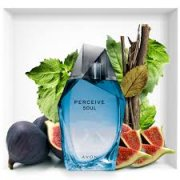 Perceive Soul for Men EDT