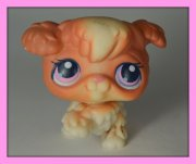 +++ LITTLEST PET SHOP - LPS - PES PUDL +++