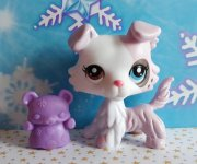 LPS LITTLEST PET SHOP kólie